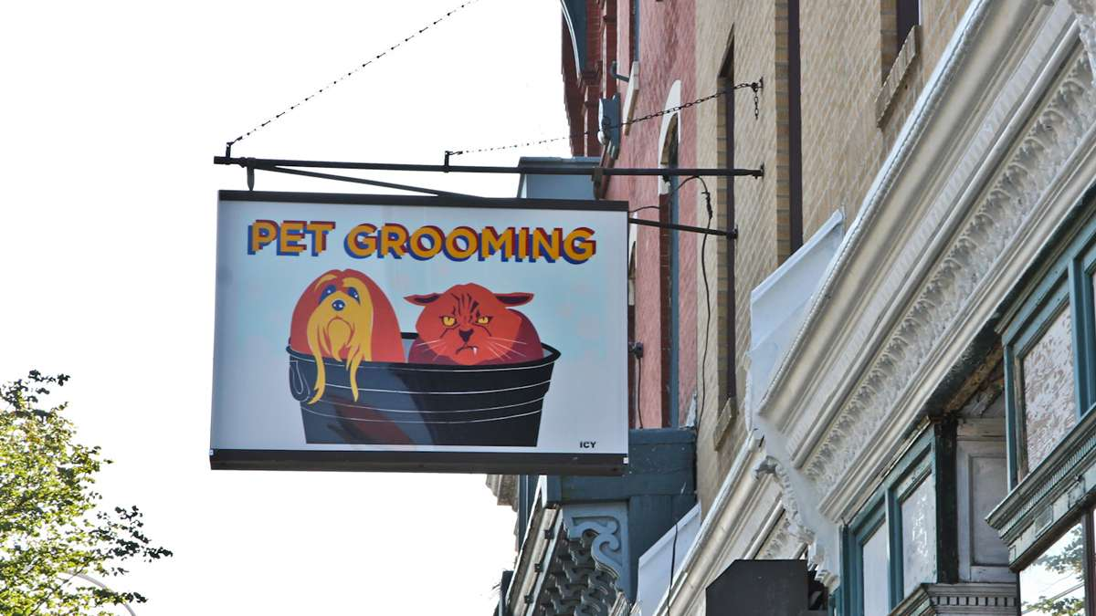 An Icy Sign at Best in Show Grooming Salon in Brewerytown. (Kimberly Paynter/WHYY)