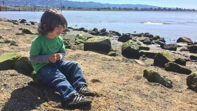 Research show keeping a journal about things we're grateful for makes us happier, and that's good for our health. Reporter Shuka Kalantari shares journaling about skipping rocks on the beach with her toddler makes happy. (Shuka Kalantari/for WHYY)