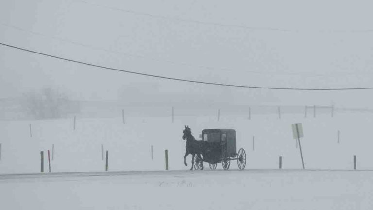 A horse and buggy drive through a winter snow storm, Tuesday, March 14, 2017, in Gap, Pa. (AP Photo/Matt Slocum)