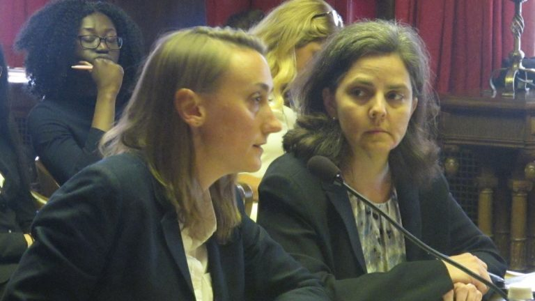 Attorney and immigration advocates testify at legislative hearing. (Phil Gregory/WHYY)