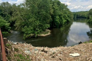 Trash backs up in the Schuylkill River at the SRT bridge near Douglassville. (Schuylkill Action Network)