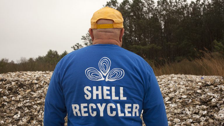 Dave Ritondo makes rounds to more than a dozen restaurants on the Delaware coast, collecting oyster shells to recycle. (Irina Zhorov/The Pulse)