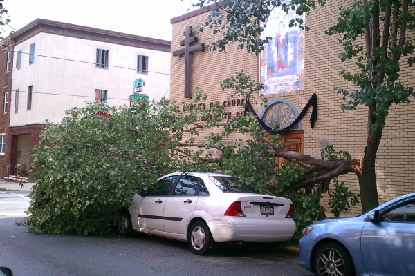Downed trees, such as this one in Philadelphia, were common sights in Delaware, Pennsylvania and New Jersey after Hurricane Irene. (Peter Crimmins/For NewsWorks)