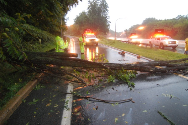 DelDOT crews work to remove a tree that had fallen at Route 202 southbound at the entrance to I-95 in Wilmington. (John Jankowski/for newsworks)