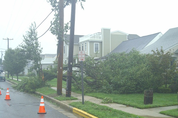 This became a common site in parts of New Jersey, as large trees fell onto power lines in Ocean City. (Tom MacDonald/For NewsWorks)
