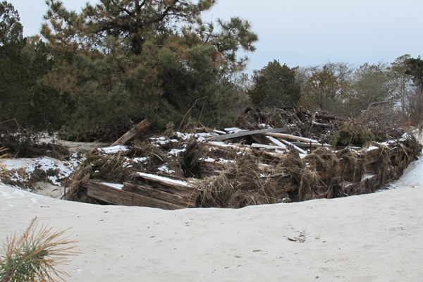 <p>&lt;p&gt;A 40-foot-long barge that wahed ashore in a 1992 storm and had been buried beneath a dune was pushed half a mile into the park woodlands by Sandy's storm surge. (Phil Gregory/for NewsWorks)&lt;/p&gt;</p>