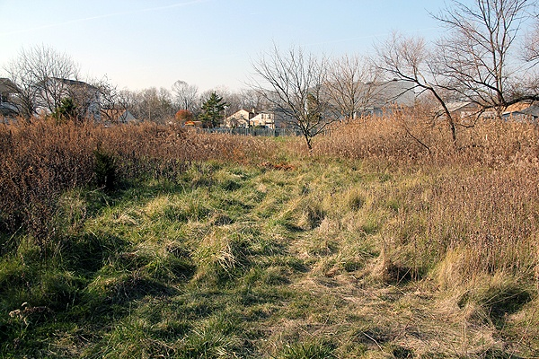 <p>Korman Residential has plans to build a 722-unit apartment complex in Eastwick near near John Heinz Wildlife Refuge, but existing zoning allows for single-family housing only. (Emma Lee/for NewsWorks)</p>