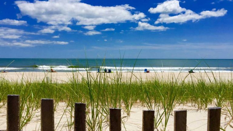 A Seaside Park dune in June 2015. (Photo: Justin Auciello/for NewsWorks