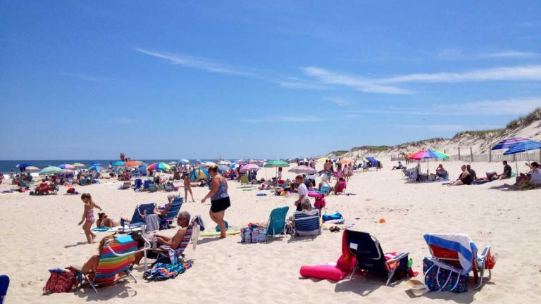 Island Beach State Park in mid-July 2014. (Photo: Justin Auciello/for NewsWorks)