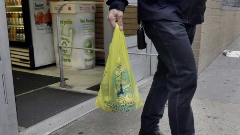 Delaware's House advances a partial ban on plastic bags to the state Senate. If the Senate passes the legislation, it would take effect in January 2021. (Richard Drew/AP Photo)