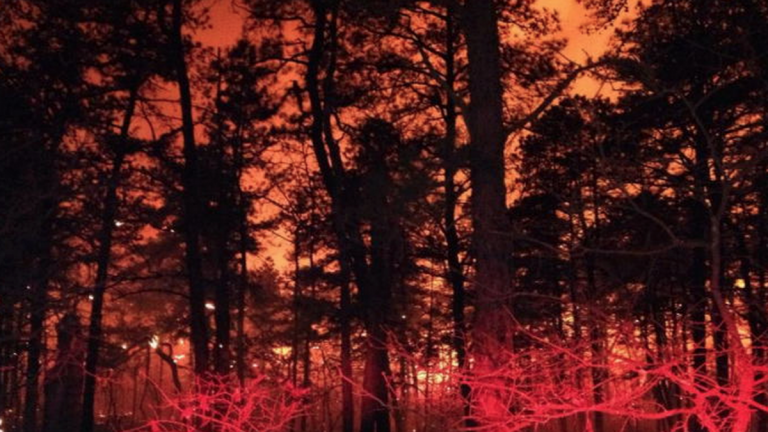 File photo from a forest fire in New Jersey in 2014. (Courtesy of the New Jersey Forest Fire Service)