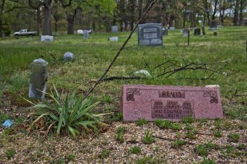 Yucca plants are planted marking and around graves at Mt. Peace Cemetery in Lawnside, N.J.