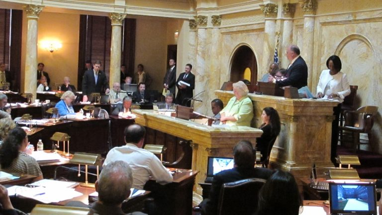 N.J. senators debate the budget bill before voting 29 to 11 to pass it. (Phil Gregory/for NewsWorks)