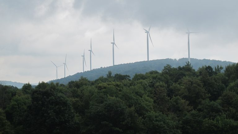 The Twin Ridges Wind Farm has 68 turbines along the Big Savage Ridge in Somerset County, Pa. (Katie Colaneri/StateImpact)
