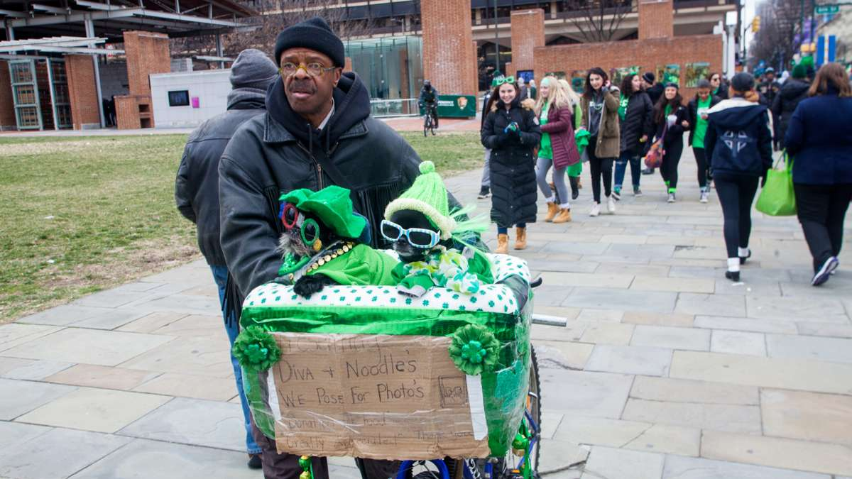 Anthony Smith of Philadelphia walks with his dogs Diva and Noodles during the 2017 Saint Patrick's Day Parade.