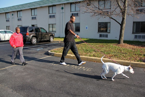 <p>Isaiah Generette and his stepfather Edward Veney take their dog, Dream, for a walk outside the Motel 6 in Swedesboro, where they have been staying since their Paulsboro home was evacuated because of a chemical spill. (Emma Lee/for NewsWorks)</p>