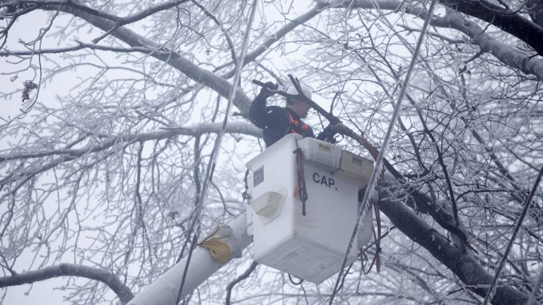 In this February 2011 photo, a PECO worker removes ice covered branches near lines in a neighborhood without power in Coatesville, Pa. (Matt Rourke/AP Photo, file)