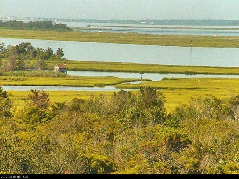 A calm morning on the Barnegat Bay. (Photo: The Friends of Island Beach State Park Osprey Cam)