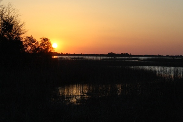 <p><p>The sun rises just above the horizon at Prime Hook National Wildlife Refuge. (Mark Eichmann/WHYY)</p></p>