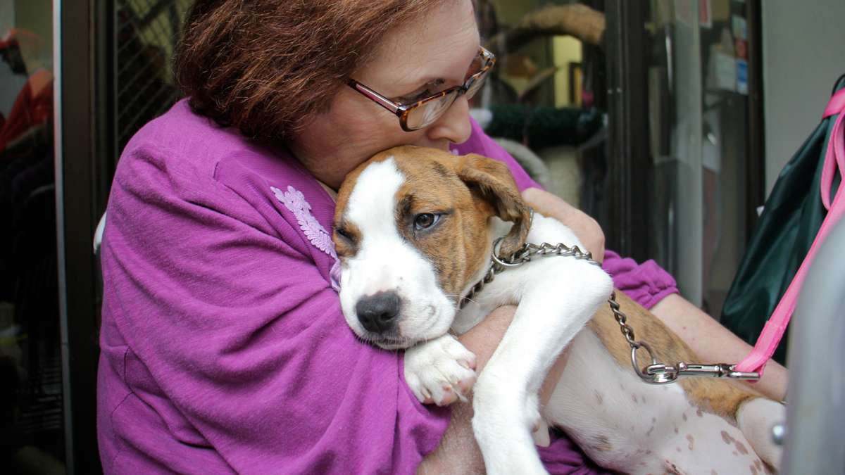 Joann Mauer cuddles the puppy she just adopted from the Morris Animal Refuge in South Philadelphia.