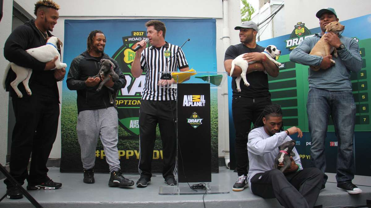 NFL draft prospect Dion Dawkins (left) of Temple, joins Eagles players (from left) Najee Goode, Ron brooks (seated), Mychal Kendrick, and Terrell Watson for a tongue-in-cheek Puppy Bowl draft staged by Animal Planet at Morris Animal Refuge in South Philly.
