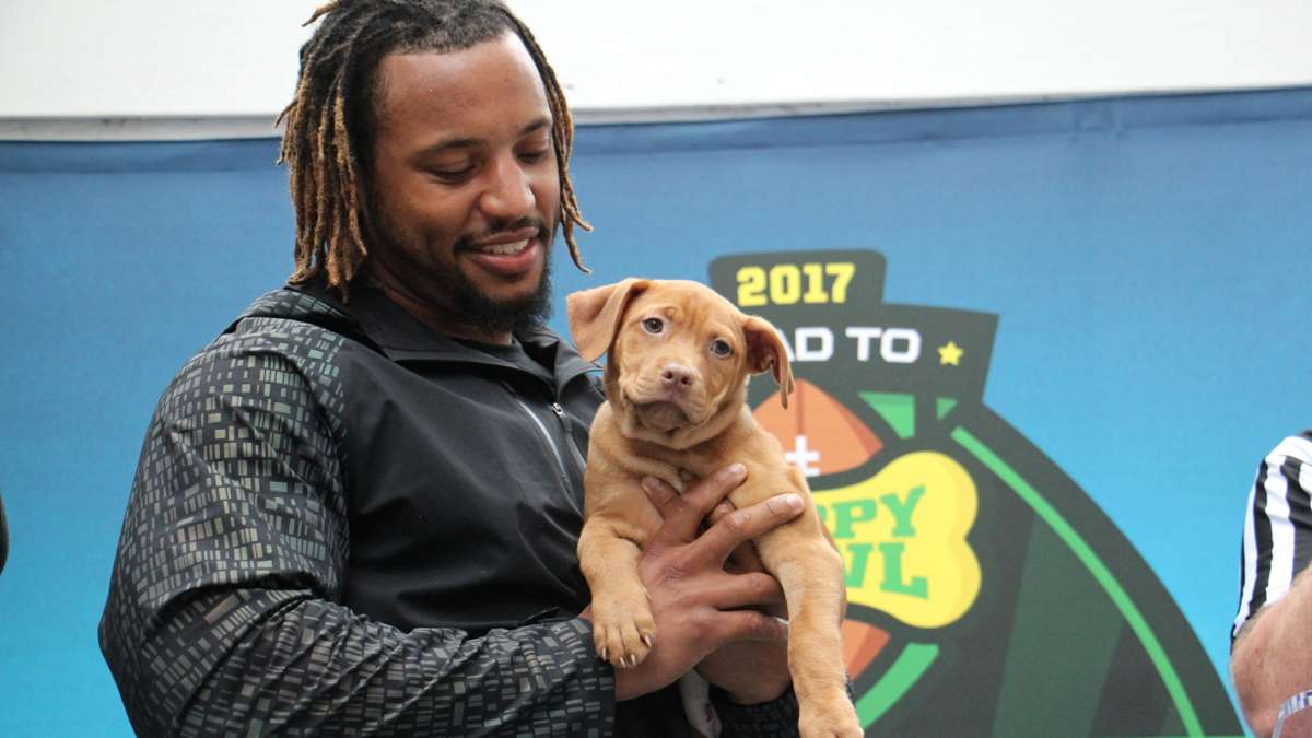 Najee Goode holds his selection in the Puppy Bowl draft.