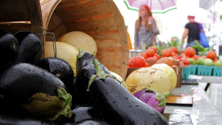 Record rain in June and July has had mixed results for local farmers. (Emma Lee/for NewsWorks)