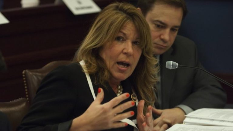 State Rep. Tina Davis, D-Bucks, lobbies for regulation of recovery houses in front of the Pennsylvania Legislature.(PAHouse.com)