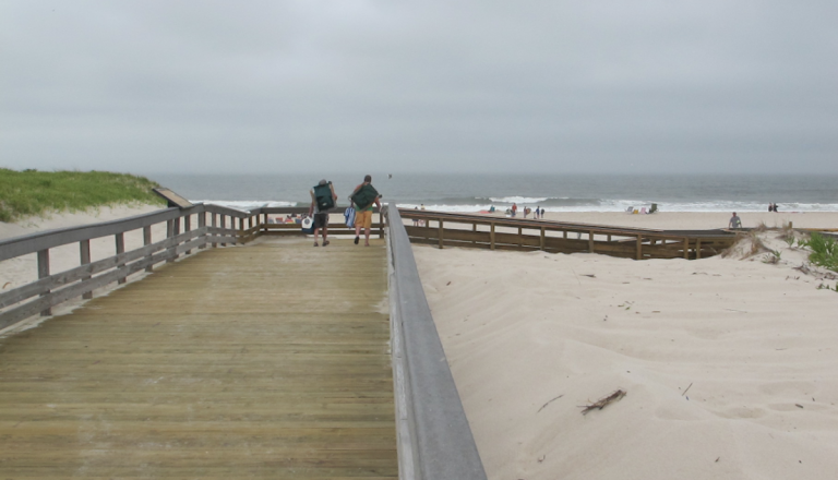 The newly restored boardwalk in Island Beach State Park. (Phil Gregory/WHYY)