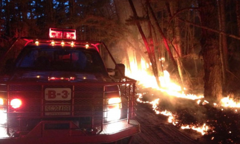 New Jersey Forest Fire Service image.