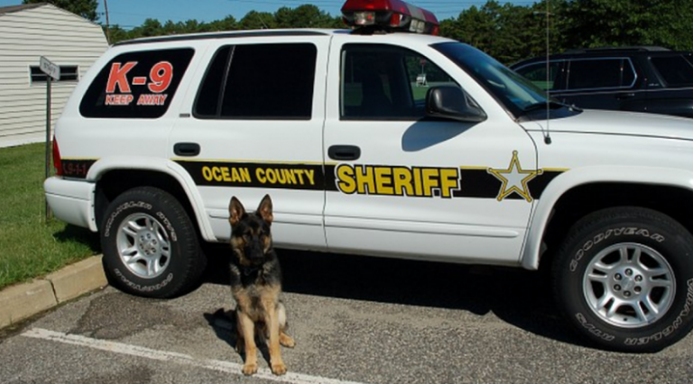 Ocean County Sheriff's Department image.