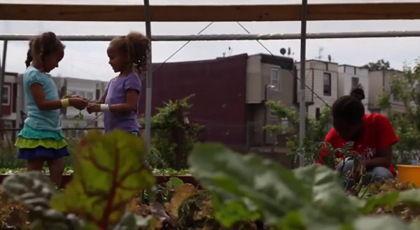 SHARE's large community garden, Nice Roots Farm, provides locally-grown fresh produce to their immediate neighbors in North Philadelphia.