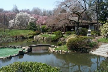 The Subaru Cherry Blossom Festival of Greater Philadelphia returns for its 20th year to celebrate Philadelphia's rich cultural connections with the art, music, food, natural beauty and industry of Japan. Shofuso Japanese House and Garden (pictured), located in Philadelphia's West Fairmount Park, provides one of the best spots for viewing cherry blossoms. Photo courtesy of Shofuso Japanese House and Garden.