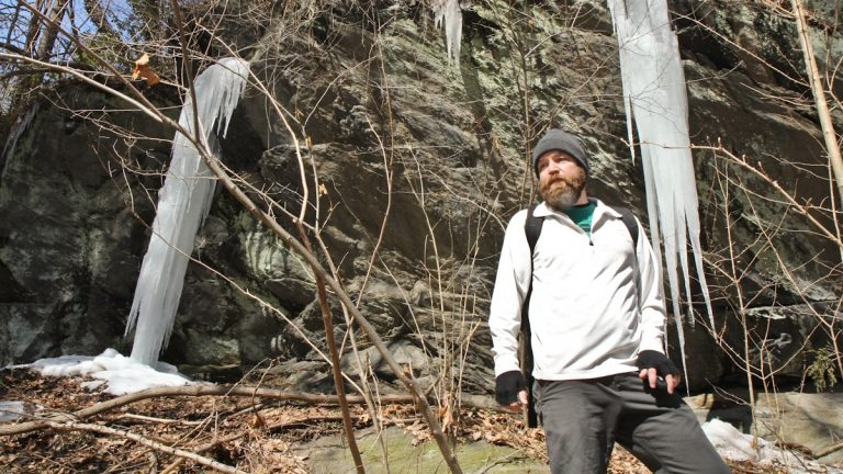 Check back this week to learn more about Bradley Maule's efforts in Wissahickon Park. (Kimberly Paynter/WHYY)