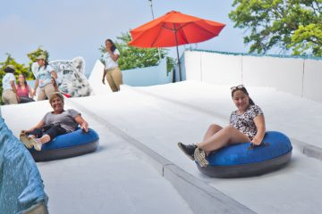 The Winter exhibit features a snow-covered slide for tubing. (Kimberly Paynter/WHYY)