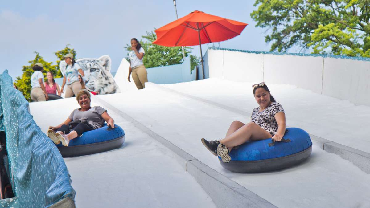 The Winter exhibit features a snow-covered slide for tubing.