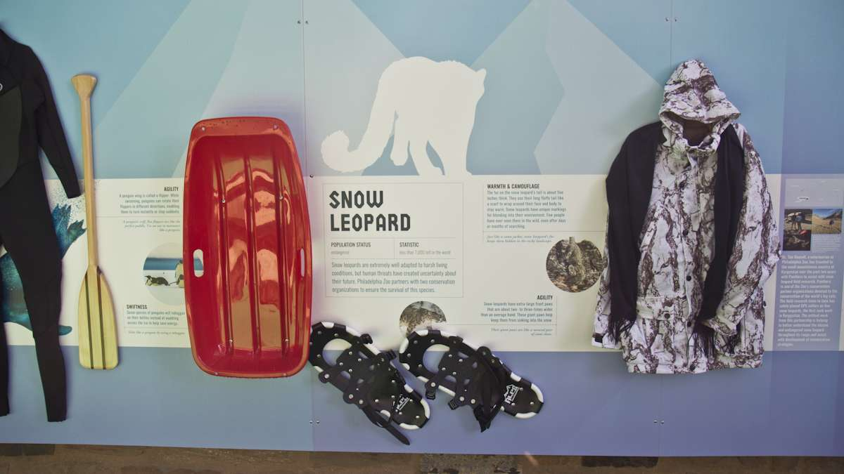 The adaptation wall compares human and animal experiences with the cold.