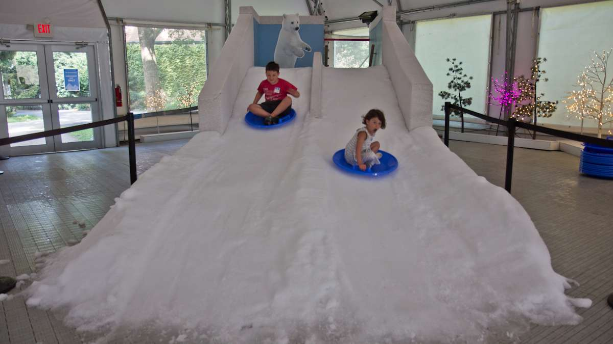 Gavin Riordan, 7, and Molly Riordan, 5, slide down the little kids snow hill at the Winter exhibit.