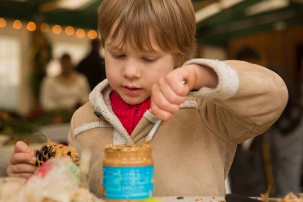 <p>Tobias Detwiler, 4, of Chestnut Hill spreads peanut butter on a pine cone to make a treat for animals at the Winter in the Wissahickon event hosted by the Friends of the Wissahickon. (Dave Tavani/for NewsWorks)</p>