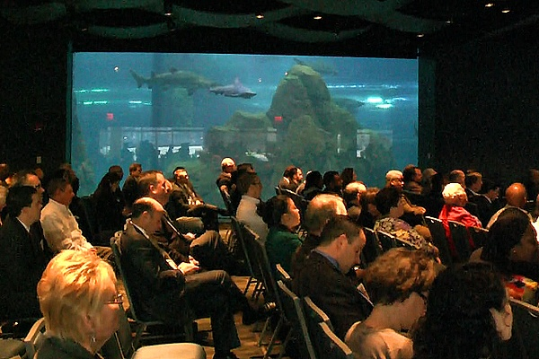 <p><p>The Adventure Aquarium in Camden allows those listening the mayor to also watch the sharks. (Alan Tu/WHYY)</p></p>