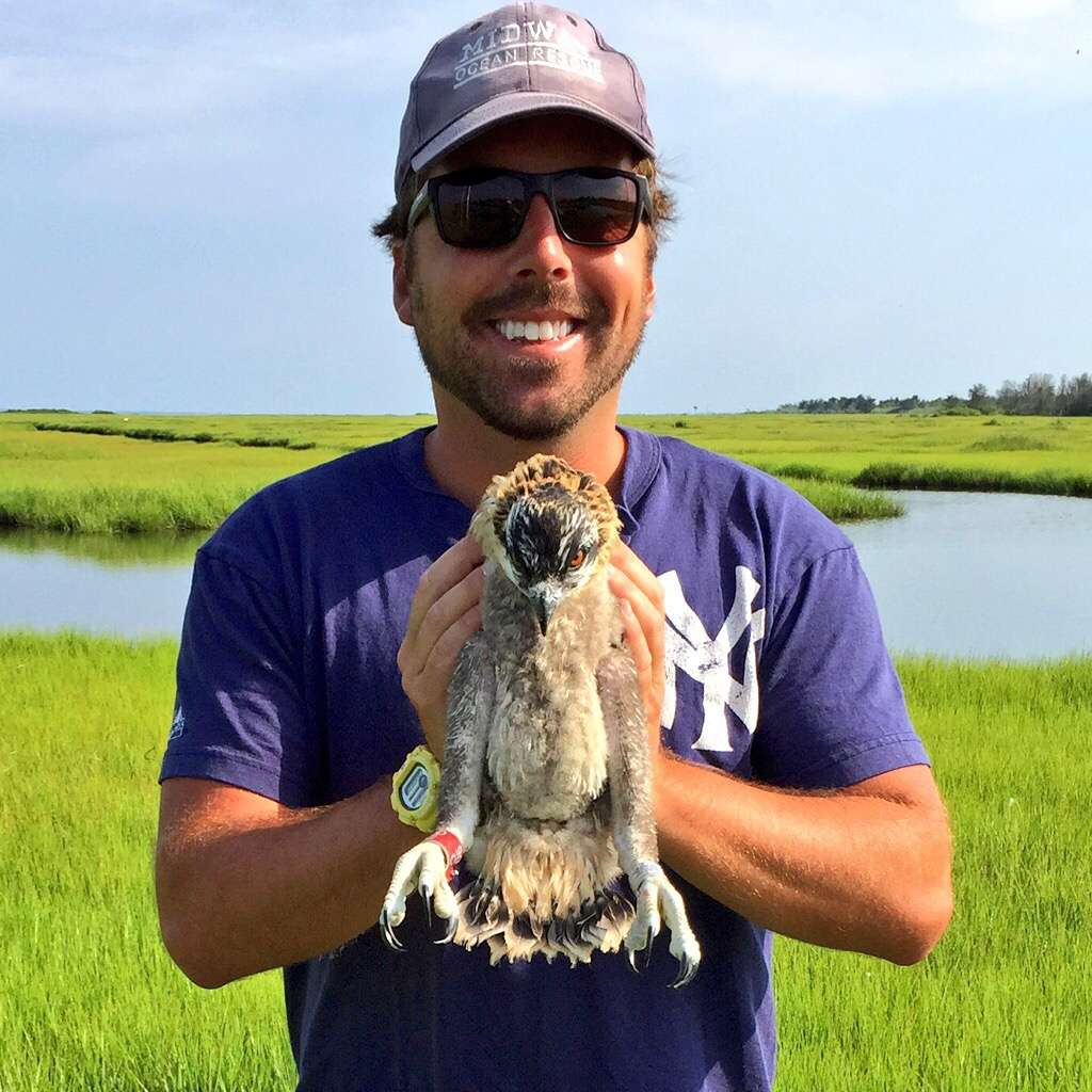 Author Justin Auciello holds an osprey chick. (Photo: Ben Wurst/CWF)