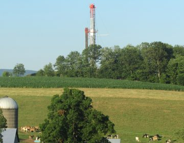 A red and white drilling rig justts out in the background behind a line of trees. Farmland and grass, a silo and cows in the foreground