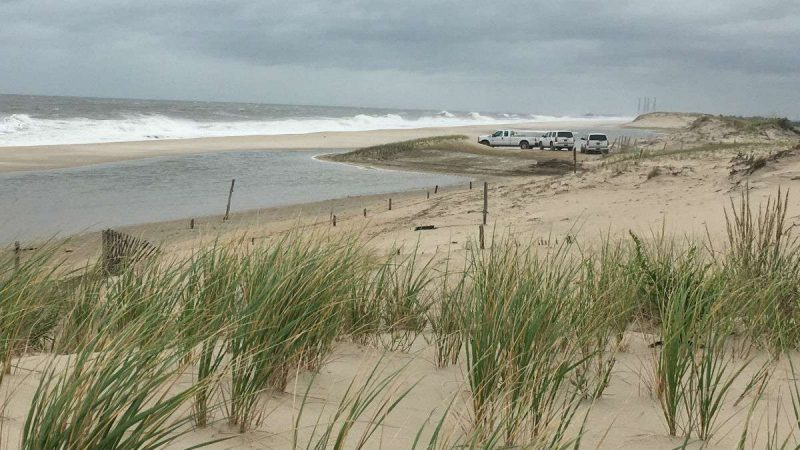 DNREC and DelDOT workers examine the progress of repairs on a breached dune south of Dewey Beach.