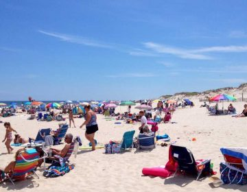 Ocean Bathing Area 1 in Island Beach State Park in July 2014. (Justin Auciello/JSHN)