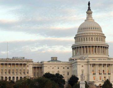 The U.S. Capitol in Washington. (Alex Brandon/AP Photo, file)