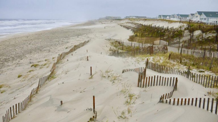 Dunes In Midway Beach South Seaside Park New Jersey Photo Dominick