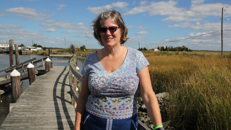 Meghan Wren, director of the Bayshore Center at Bivalve, hopes that oyster reefs will slow erosion and protect the only road to her home on Money Island.