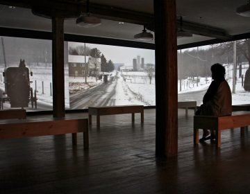 A gallery space, benches, video on screens