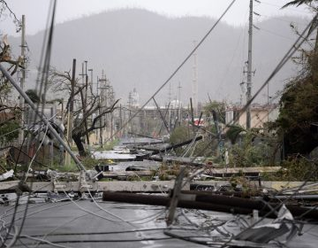 Hurricane Maria smashed poles and snarled power lines in Puerto Rico. Belinda Pastrana, a chemistry professor at the University of Puerto Rico at Mayaguez, says devastation from September's powerful storm is making it impossible to continue her work on the island.