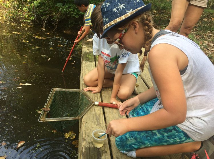 Fifth grader studying health of pond at Brandywine Red Clay Alliance in West Chester (Shirley Min/WHYY)